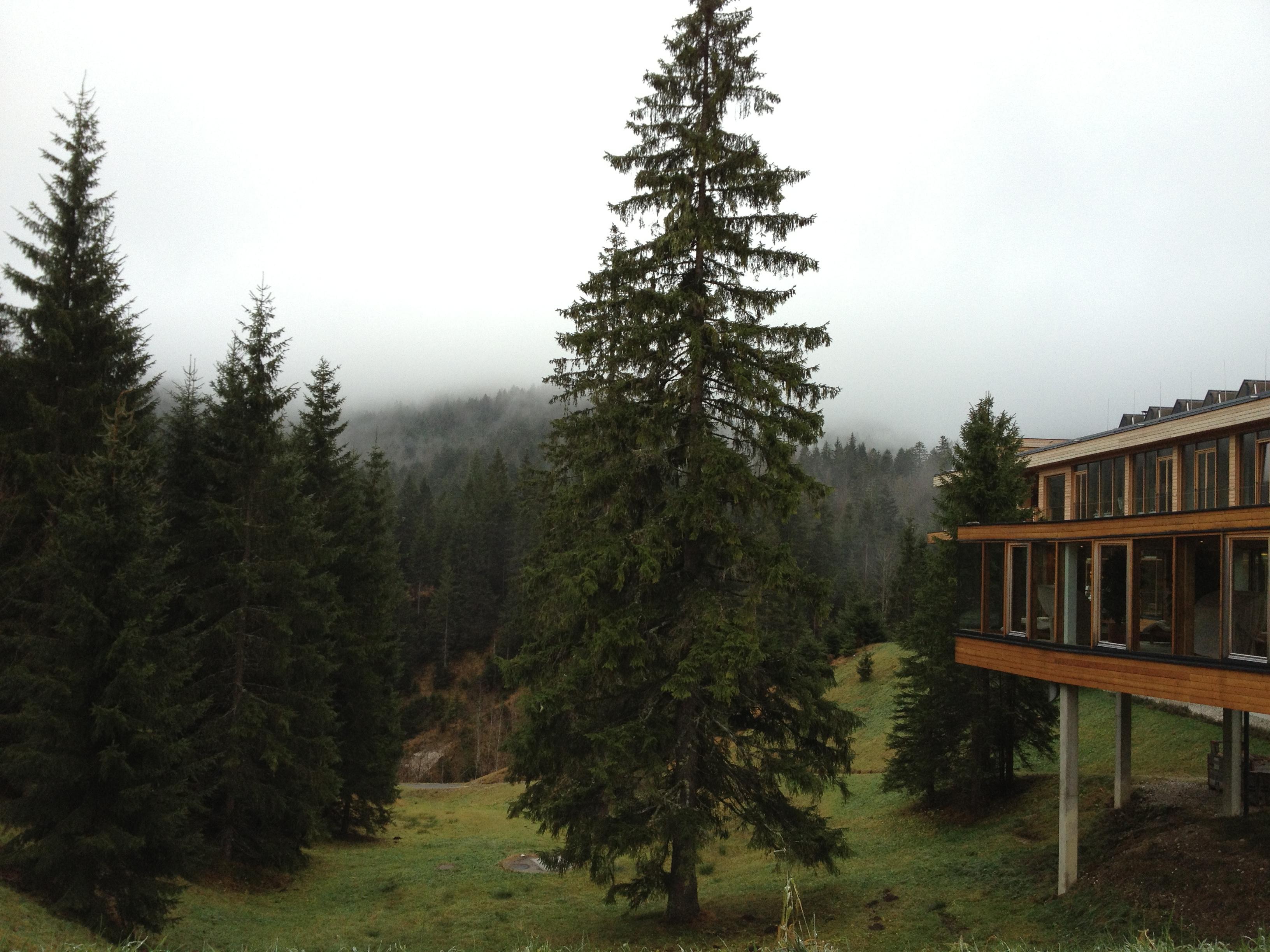 Das Kranzbach, View