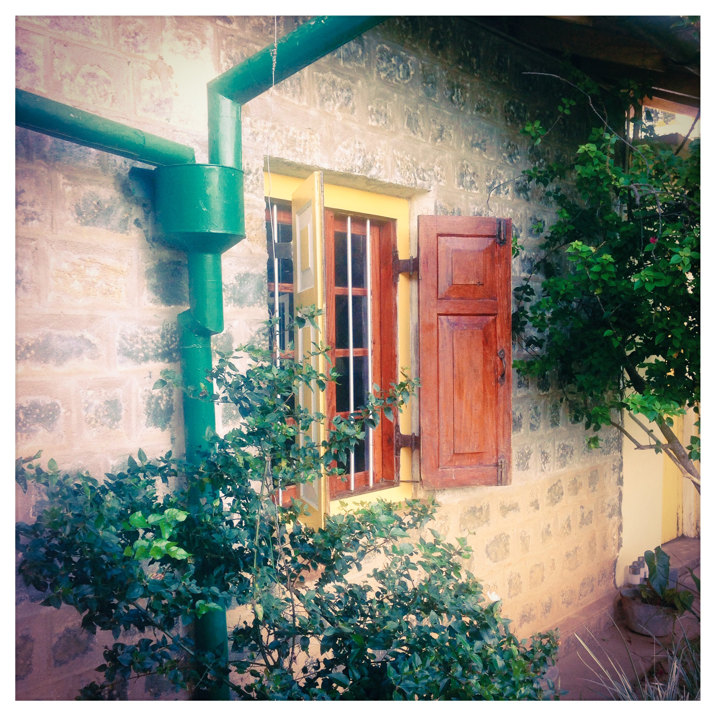 Amba Estate - Farm House